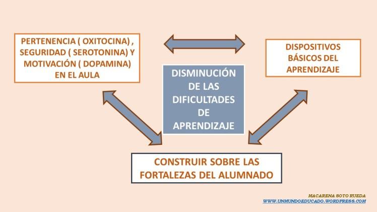 dba+fortalezas+hormonas.jpg